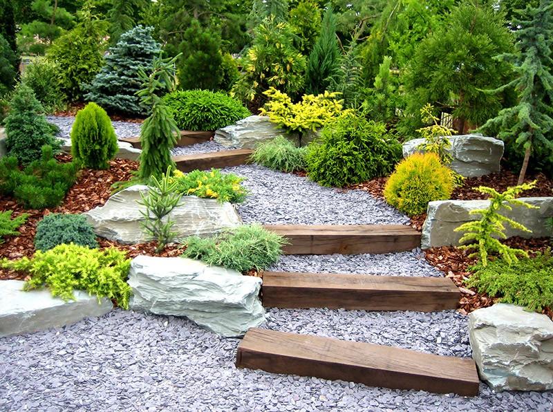 Spécialiste de la création jardin près de Maintenon : Renard Rene